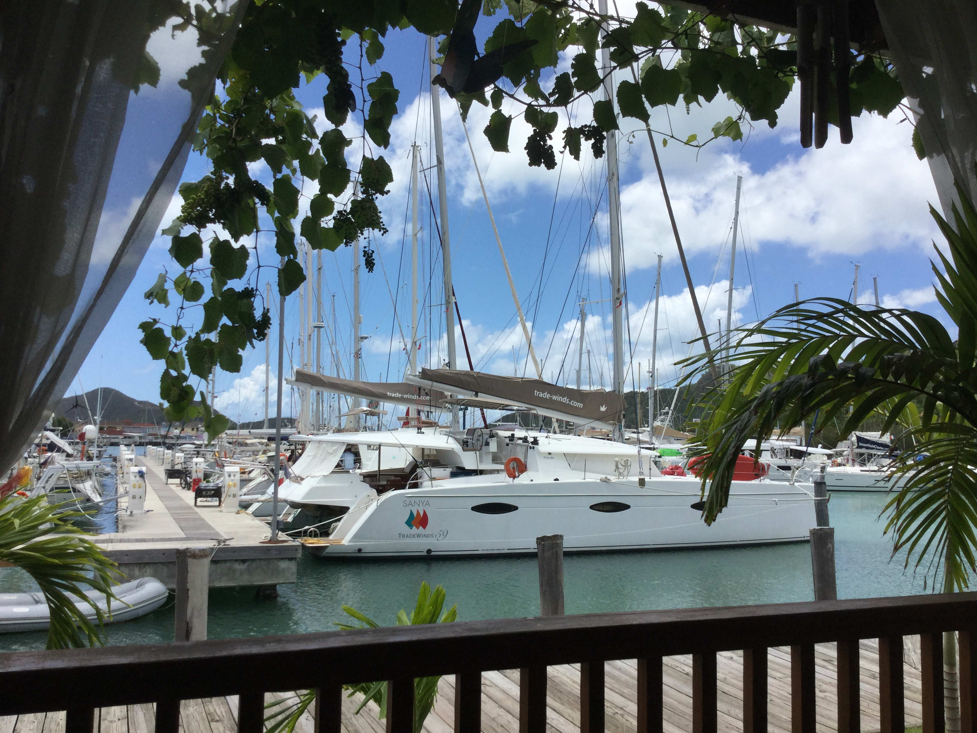 TradeWinds Cruise Club-Antigua image