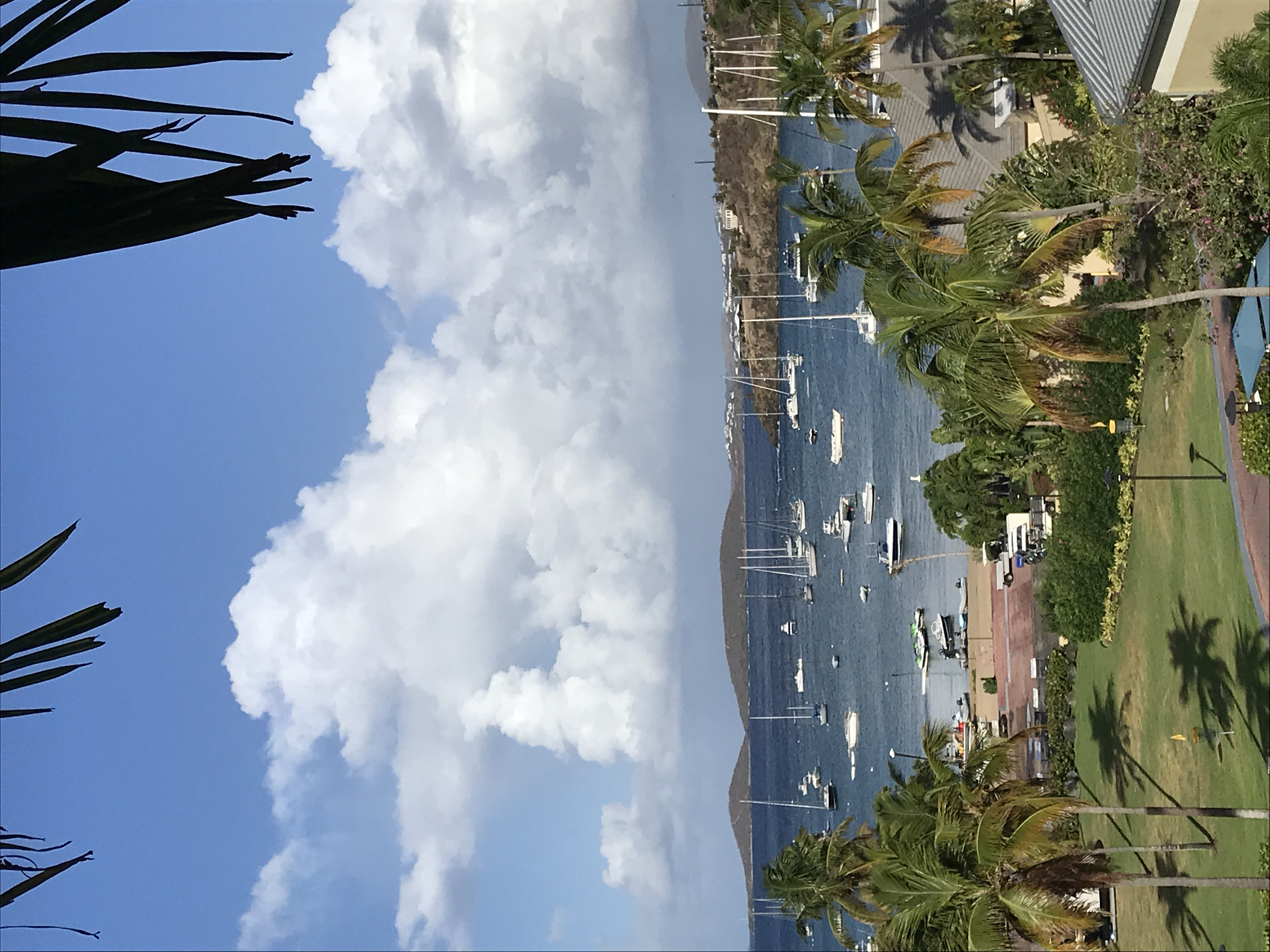 Westin St John Resort and Villas Virgin Grand Bay Vista Coral Vista image