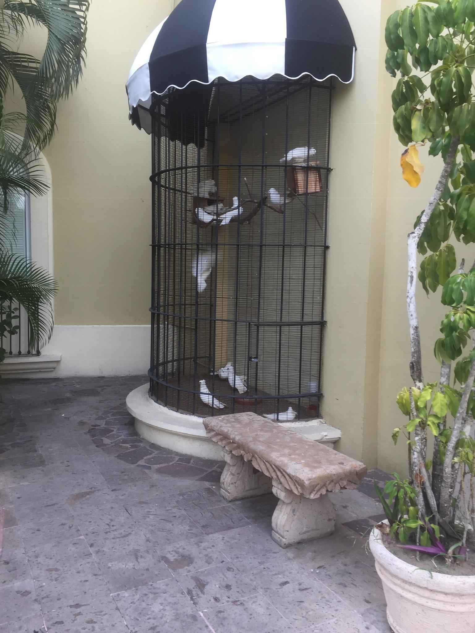Pueblo Bonito Resort Mazatlan image