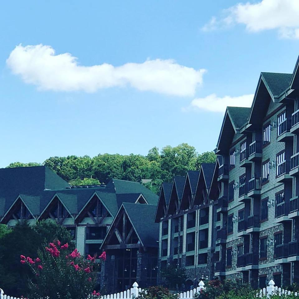 Paradise Point Resort image