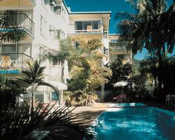 Island Palms image