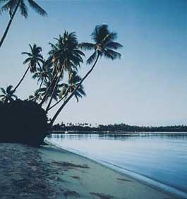 Malolo Lailai Lagoon Resort image
