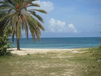 Marina Bay Beach Resort image
