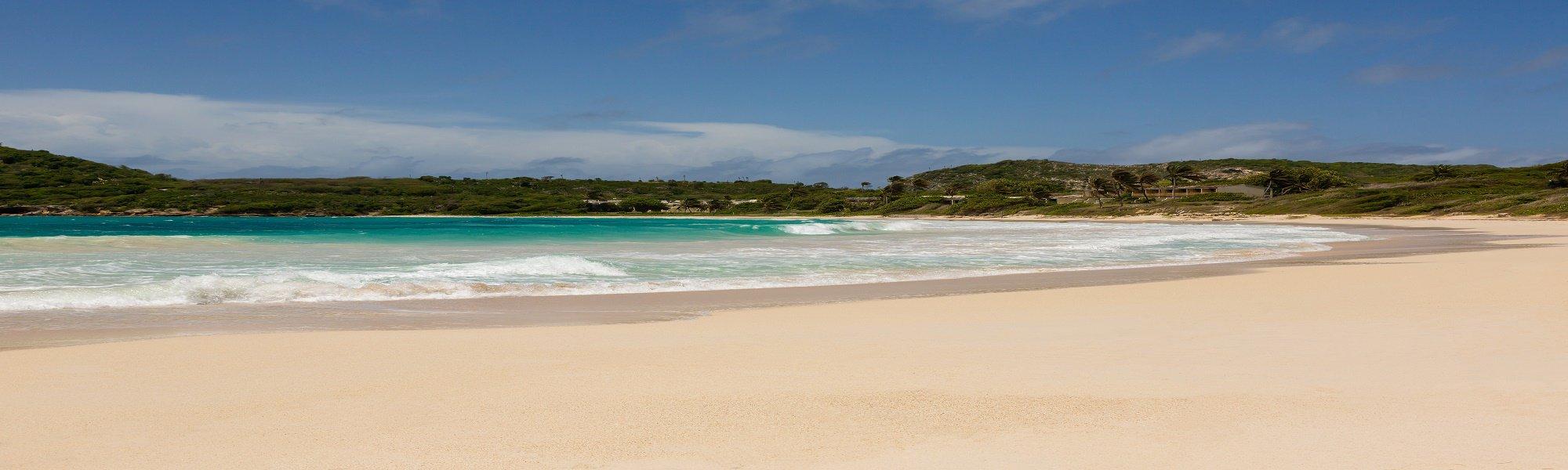 Rex Halcyon Cove image