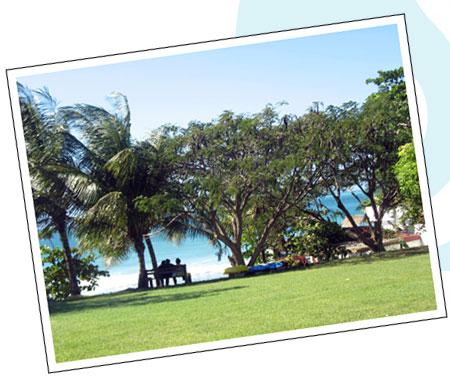 Sandy Point Beach Club image