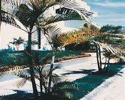 Taranova-Villas Palmas image