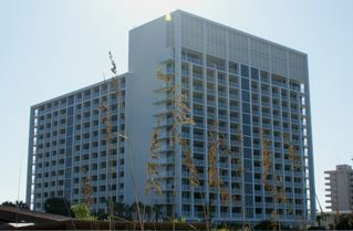 Marriott Crystal Shores image