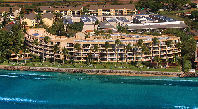 Paki Maui image