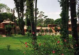 Rincón del Este image