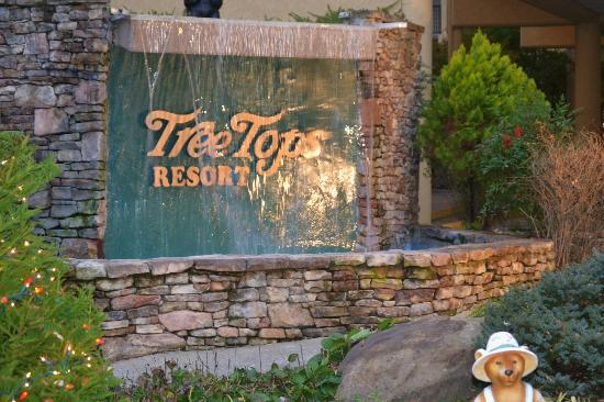 Tree Tops Resort image