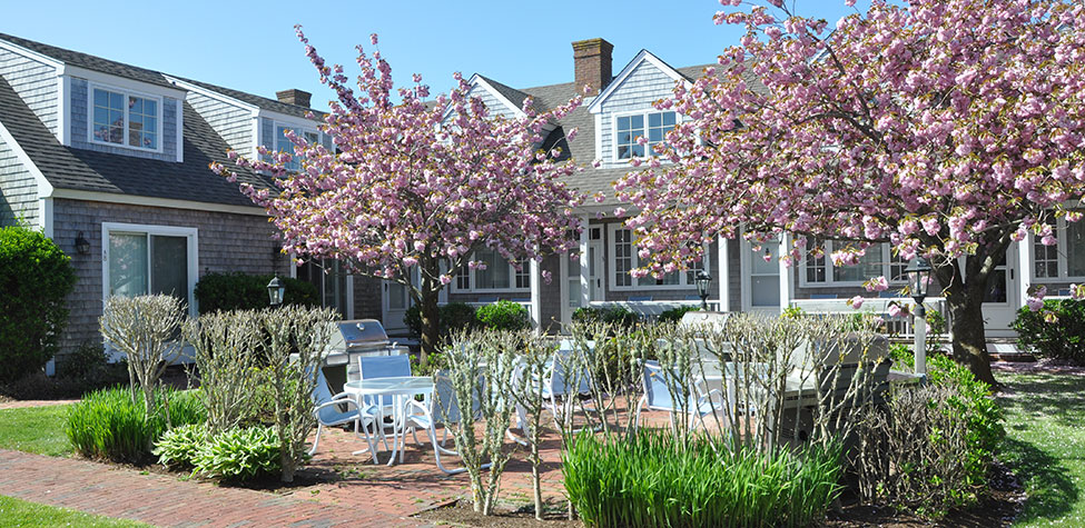 Brant Point Courtyard image
