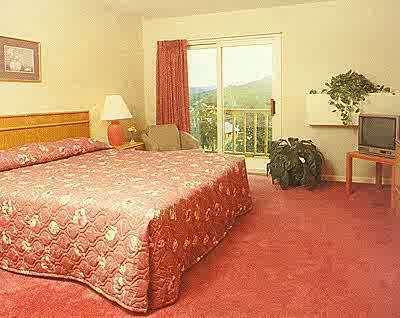 Holiday Inn Club Vacations Oak N' Spruce Resort image