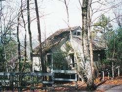 Petit Crest Villas at Big Canoe image