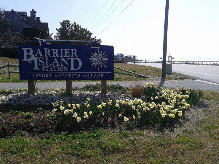 Barrier Island Station-Duck image