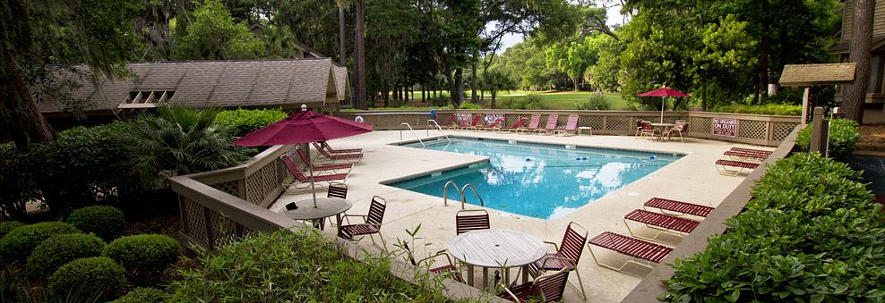 Swallowtail at Sea Pines Resort image