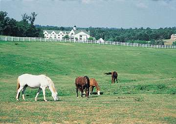 Bluegreen Shenandoah Crossing image