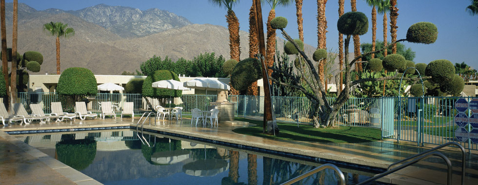 Desert Isle of Palm Springs image