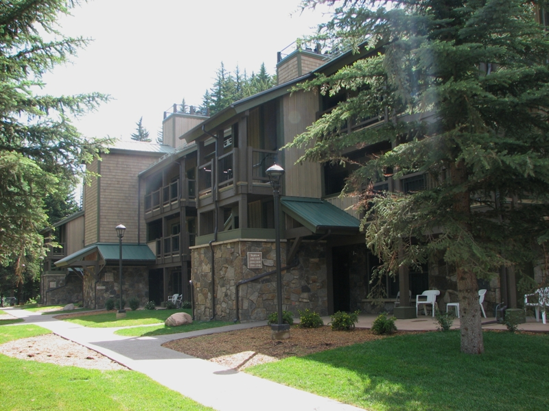 aspen at streamside